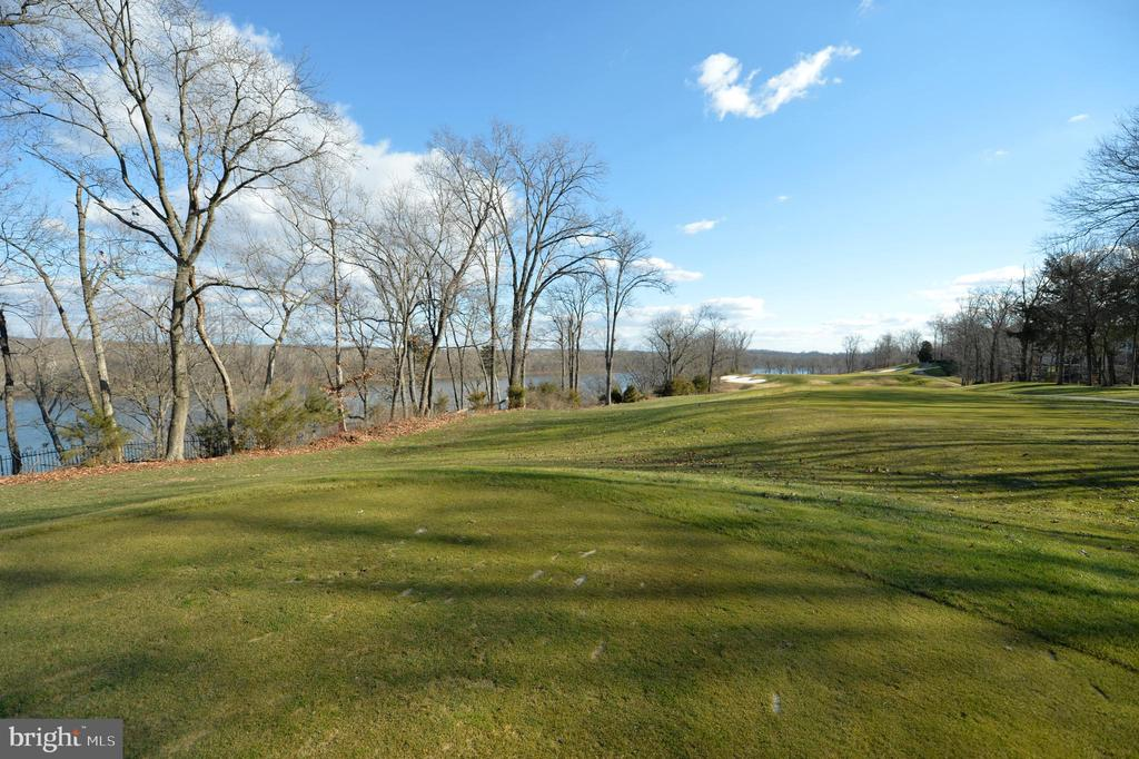 Golf course and back yard views - 18184 SHINNIECOCK HILLS PL, LEESBURG