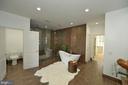 Master bath soaking tub - 18184 SHINNIECOCK HILLS PL, LEESBURG
