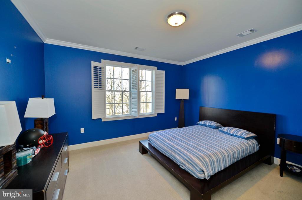 Bedroom 3 - 18184 SHINNIECOCK HILLS PL, LEESBURG