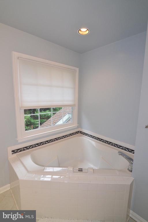 Master Bath  Tub. - 47408 GALLION FOREST CT, STERLING