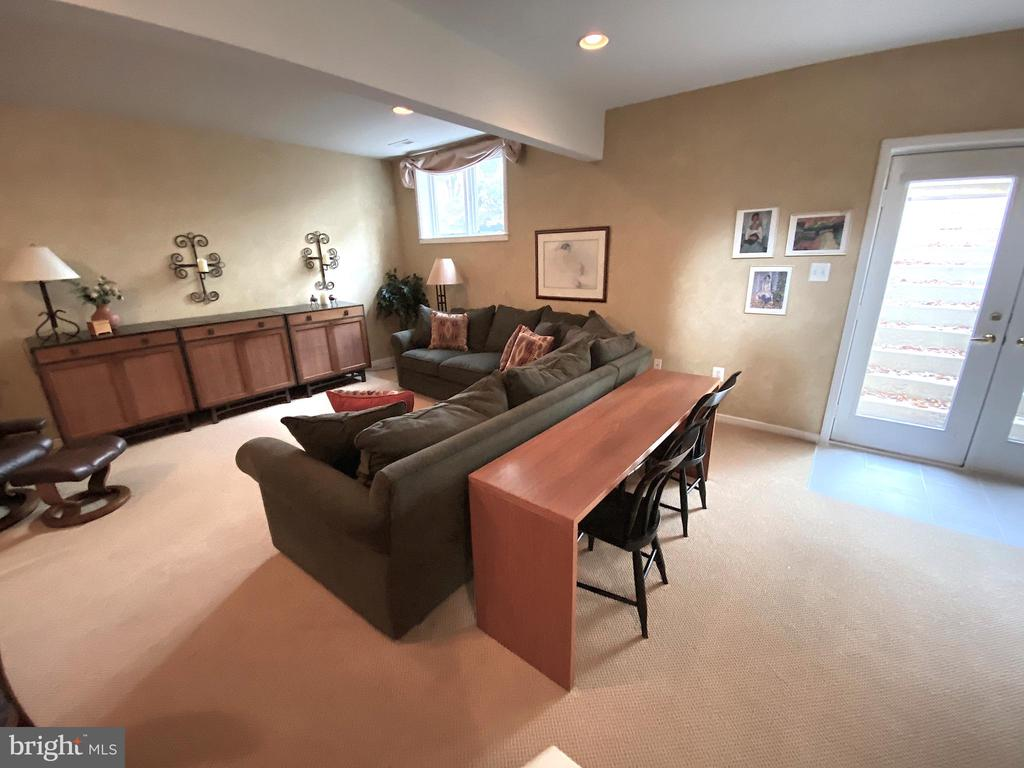 Lower Level  Family Room - 20876 WATERBEACH PL, STERLING