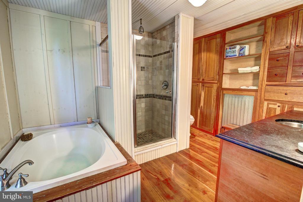 Master bathroom - 16960 IVANDALE RD, HAMILTON