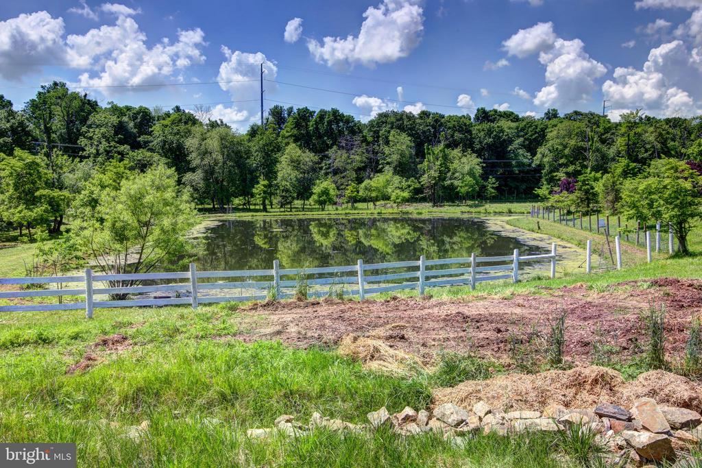 Second pond - 16960 IVANDALE RD, HAMILTON
