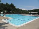 Danbury Forest Community Pool - 8396 UXBRIDGE CT, SPRINGFIELD