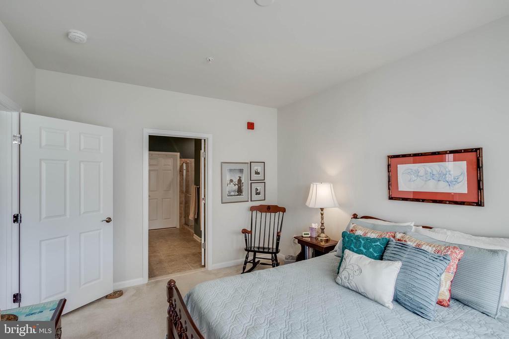 Master Bedroom - 20660 HOPE SPRING TER #204, ASHBURN