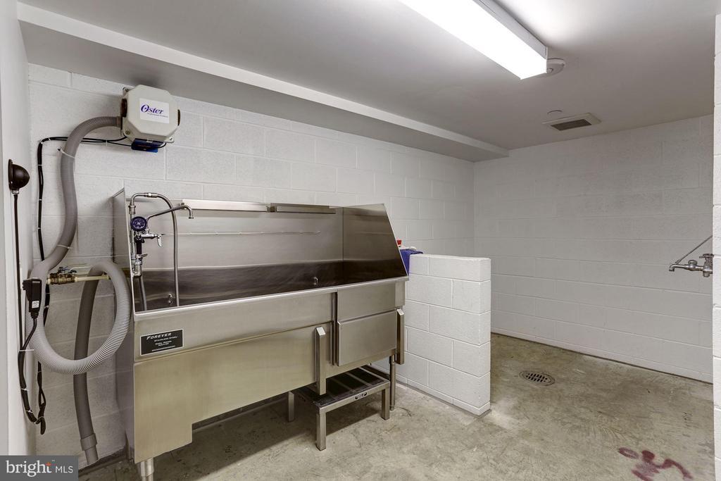 Dog Washing Room - 601 N FAIRFAX ST #605, ALEXANDRIA