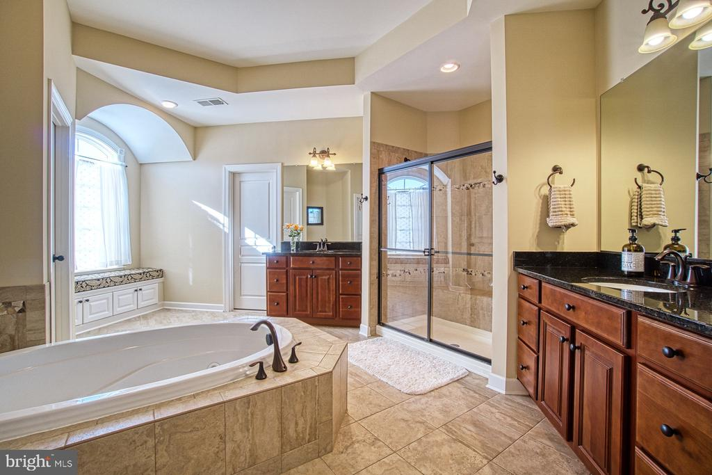Custom Luxury Master Bathroom - 8251 ARROWLEAF TURN, GAINESVILLE