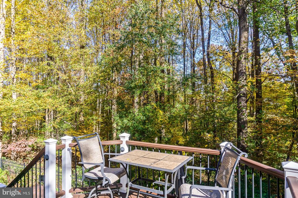 Peaceful View from Rear Deck - 1515 JUDD CT, HERNDON