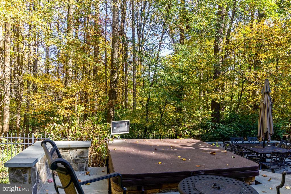 Enjoy the Hot Tub overlooking Beautiful Treed Area - 1515 JUDD CT, HERNDON