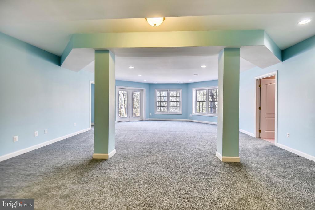 Recreation Room - 43546 FIRESTONE PL, LEESBURG