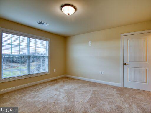 2nd Bedroom - 220 LACOSTA CT, WINCHESTER