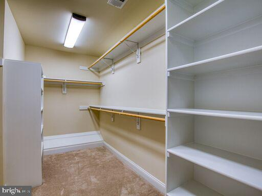 Master Closet with tons of storage! - 220 LACOSTA CT, WINCHESTER