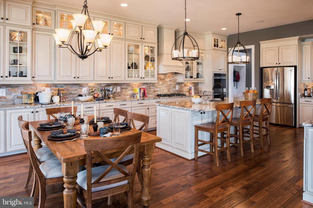 Dreamy kitchen with great lighting - 18293 WILD RASPBERRY DR, PURCELLVILLE