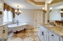 Master Bathroom - 1644 WHITE PINE DR, VIENNA