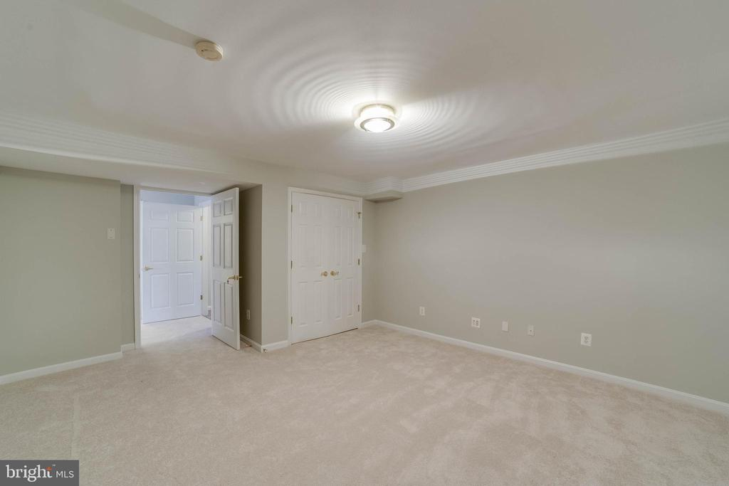 Lower level den - 21072 CARTHAGENA CT, ASHBURN
