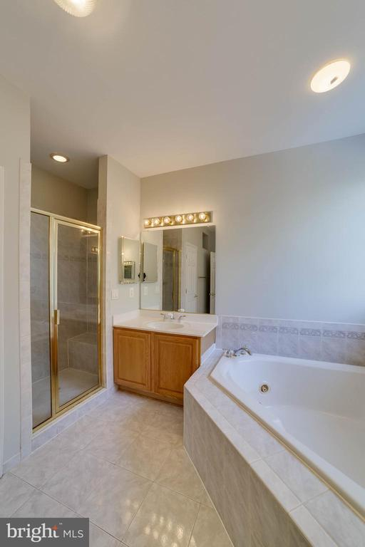 Master bath - 21072 CARTHAGENA CT, ASHBURN