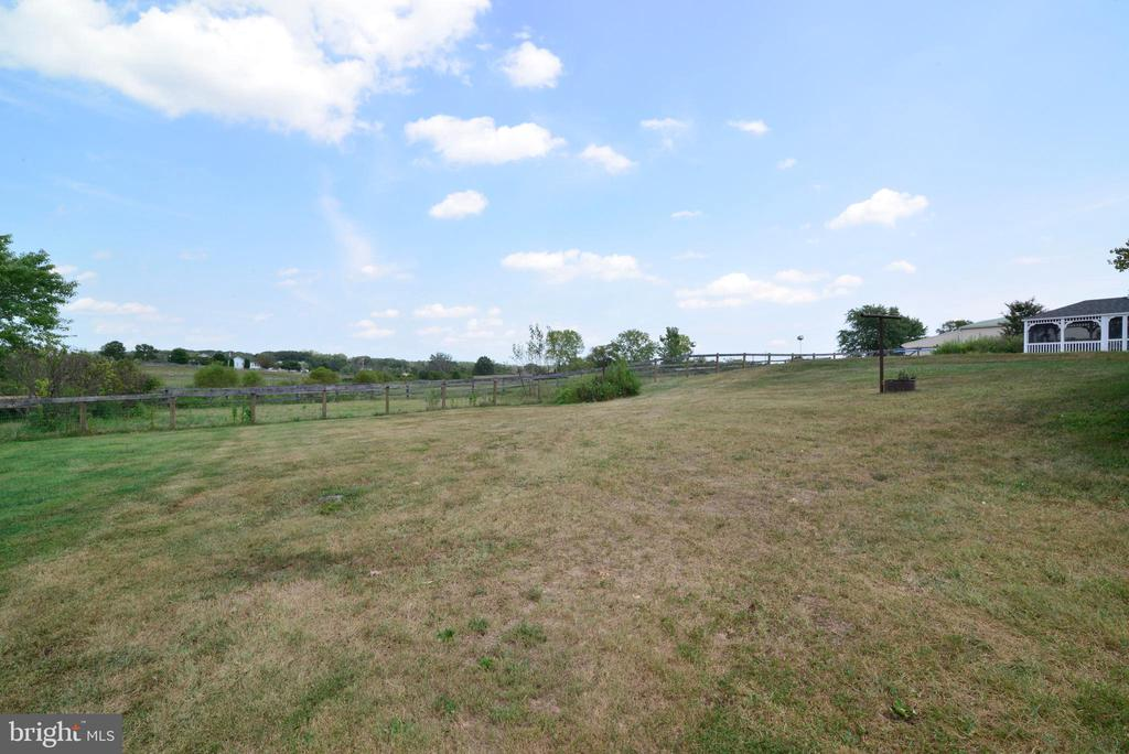 HUGE SIDE YARD COULD BE MORE GRAZING AREA - 14290 CHAPEL LN, LEESBURG