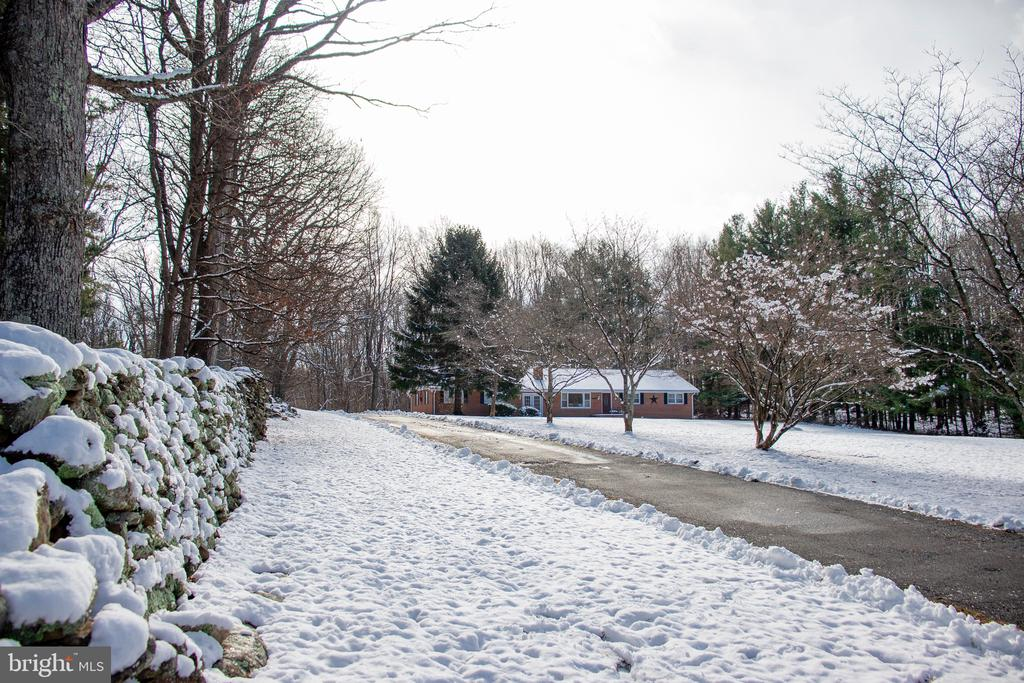 Beautiful stone and tree lined driveway - 34797 HARRY BYRD HWY, ROUND HILL