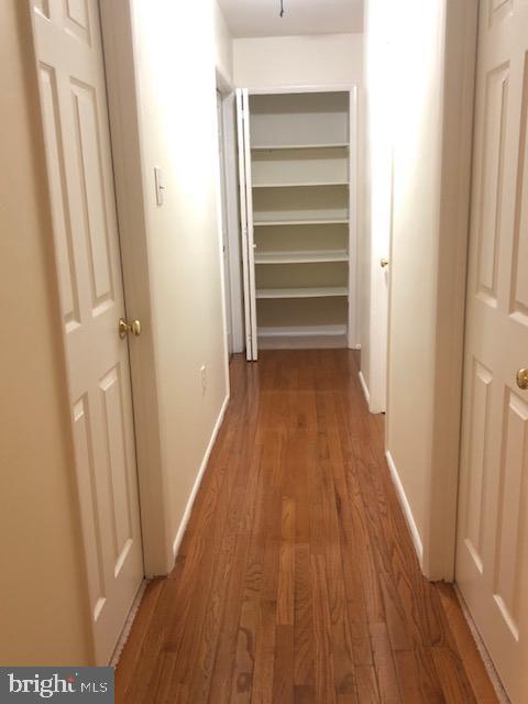 Upper Level Hallway - 102 WILLOW PL, STERLING