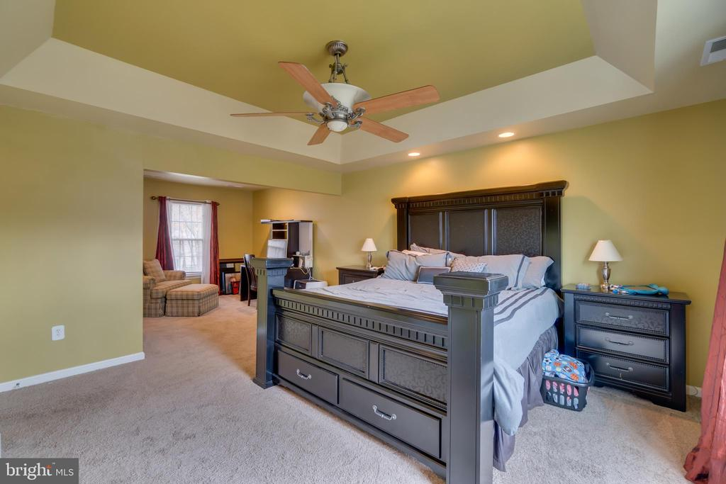 Master Bedroom: Dramatic Tray Ceiling - 3 FRANK CT, STAFFORD