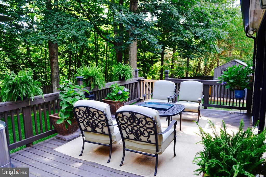Before new deck and new Patio. - 5 APPLE BLOSSOM CT, STAFFORD