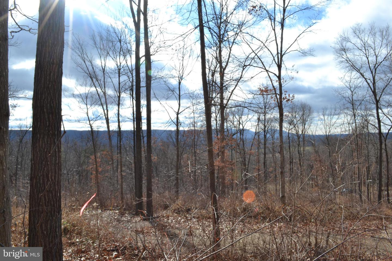 土地 のために 売買 アット Toms Brook, バージニア 22660 アメリカ