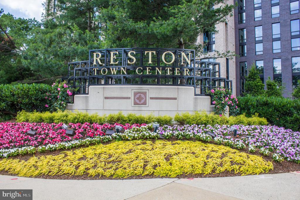 Reston Town Center Sign - 11990 MARKET ST #503, RESTON