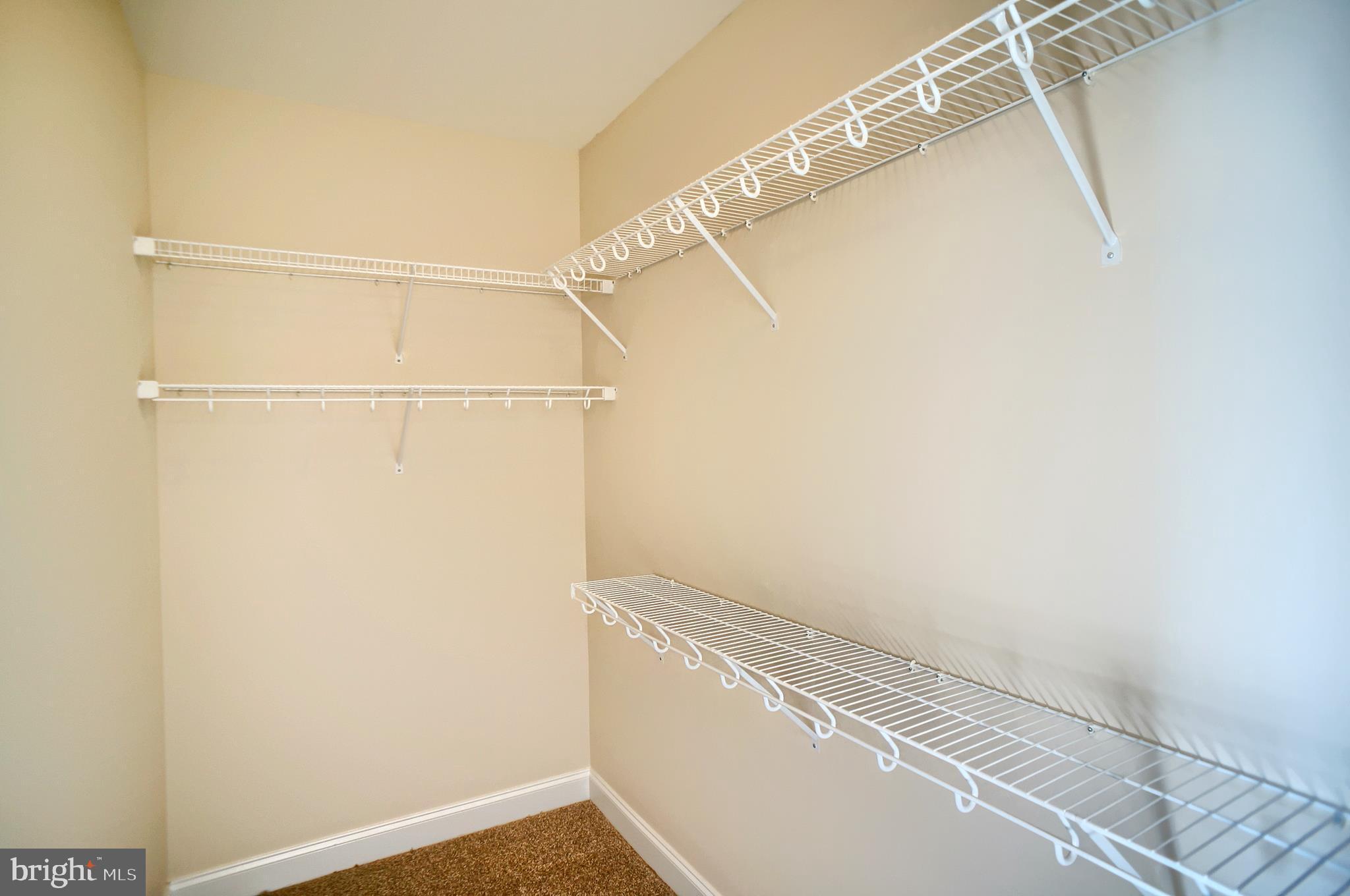1st floor Master bedroom - walk in closet