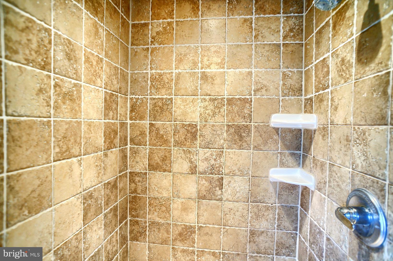 Master bathroom - 2nd floor shower