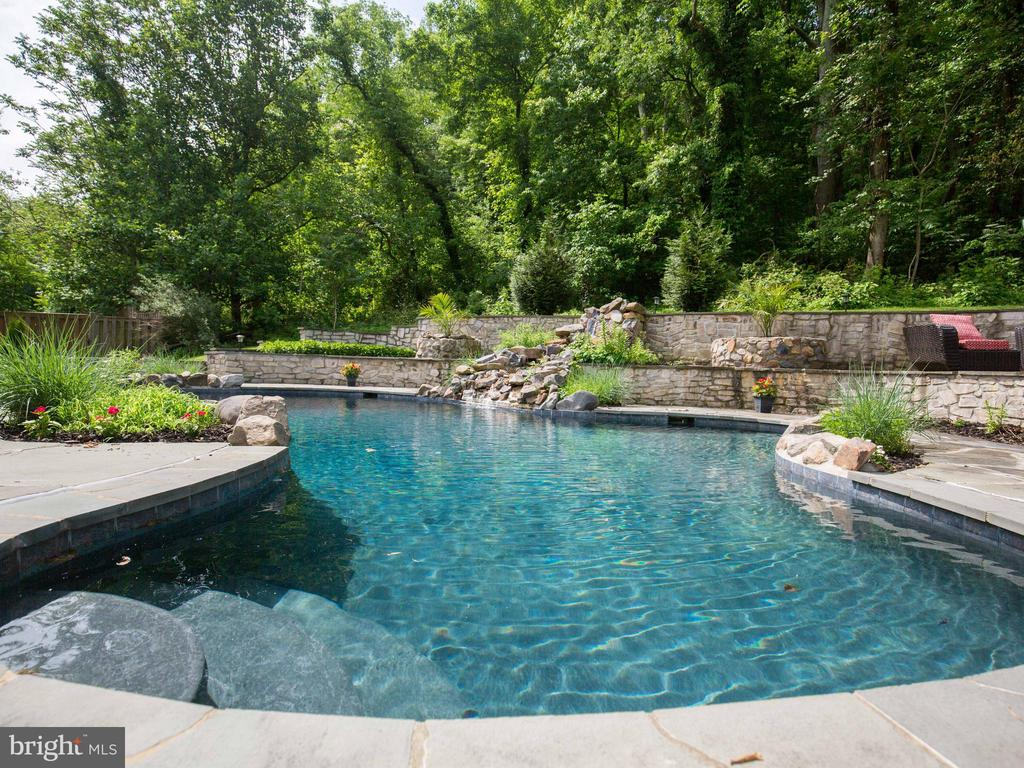 heated pool - 36847 STONY POINT RD, HILLSBORO