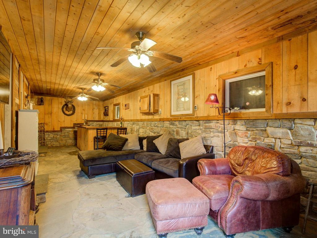 Main level bar/rec room - 36847 STONY POINT RD, HILLSBORO