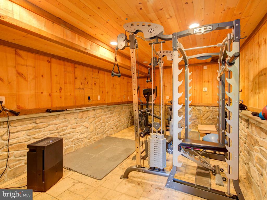 lower level workout area or future wine cellar - 36847 STONY POINT RD, HILLSBORO