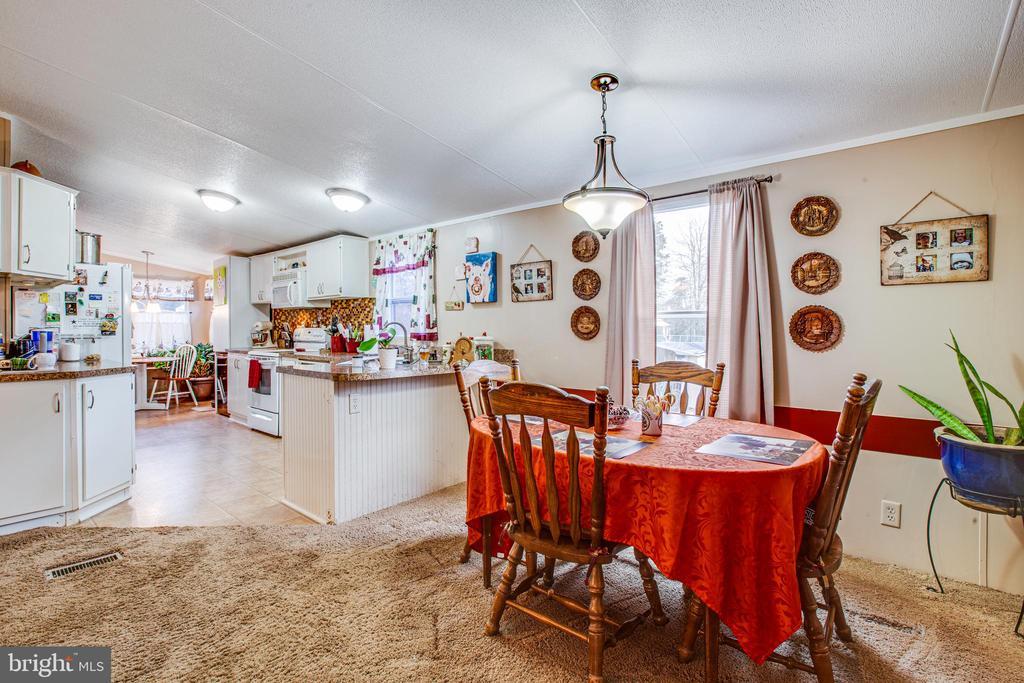 Dining Room - 873 JOHNSON RD, MINERAL