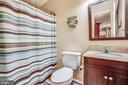 Hall Bath - 873 JOHNSON RD, MINERAL