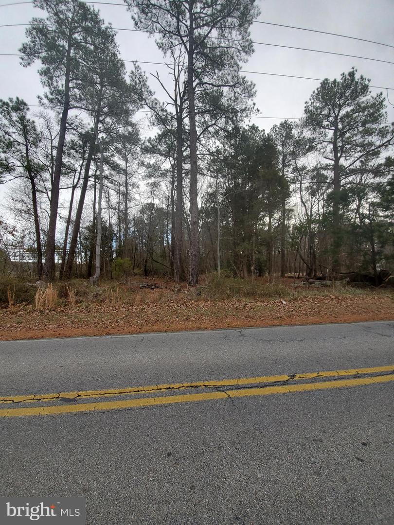 Land for Sale at Dowell, Maryland 20629 United States