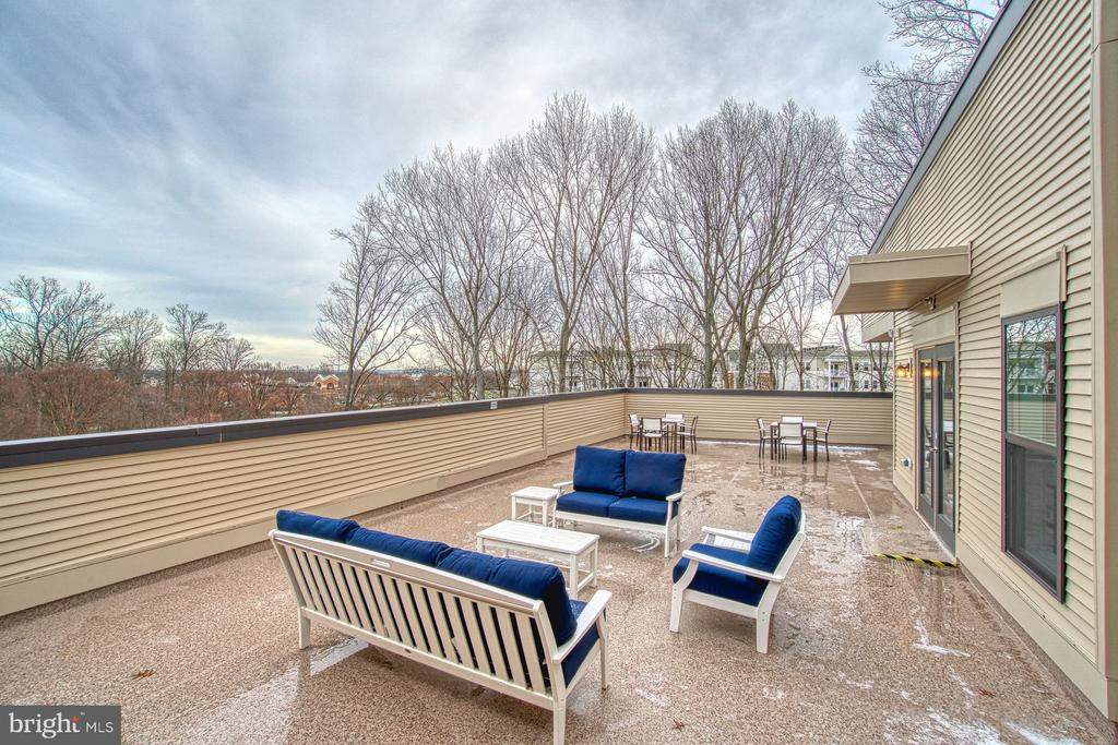 Shared Rooftop Terrace - 43095 WYNRIDGE DR #406, BROADLANDS