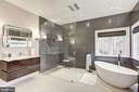 Luxury master Bath - 1049 BROOK VALLEY LN, MCLEAN