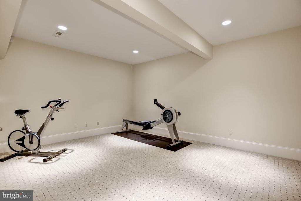 Exercise/Bonus Room - 1049 BROOK VALLEY LN, MCLEAN
