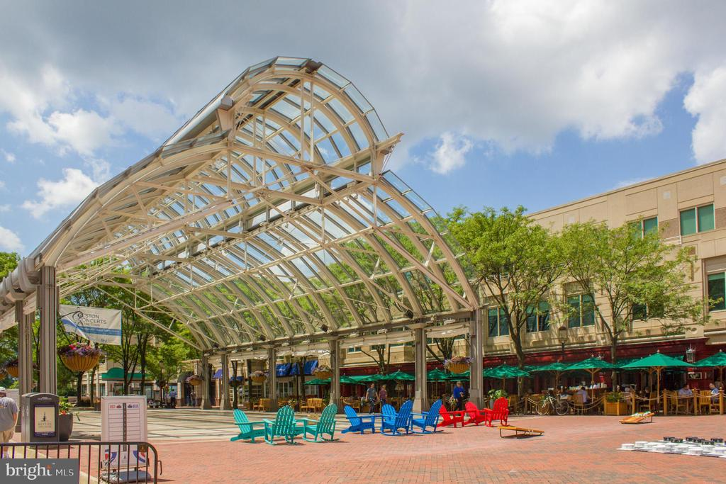 RTC Ice Rink in Summer - 11990 MARKET ST #2114, RESTON