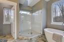 Super-sized frameless shower - 315 BONHEUR AVE, GAMBRILLS