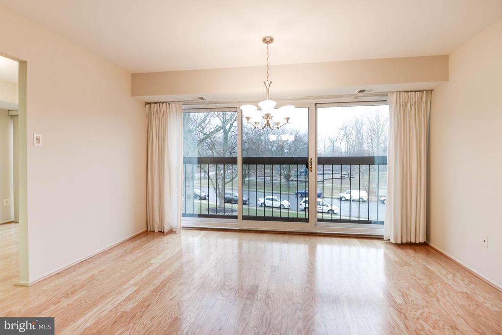 natural light facing the park - 3031 BORGE ST #310, OAKTON