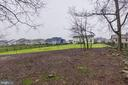Mature trees on back end of your lot - 22982 HOMESTEAD LANDING CT, ASHBURN