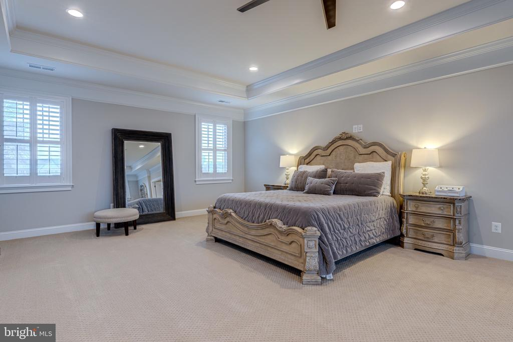 Owner's suite with tray ceiling - 22982 HOMESTEAD LANDING CT, ASHBURN