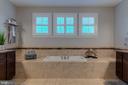 Luxury soaking tub - 22982 HOMESTEAD LANDING CT, ASHBURN