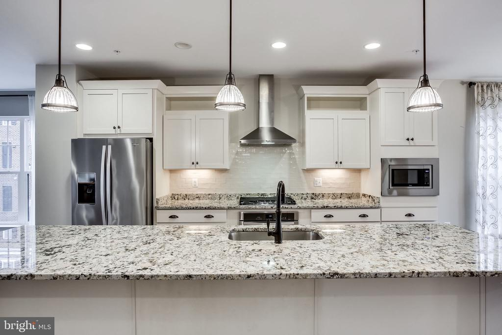 This Kitchen is Calling Your Name! - 264 BLUEMONT BRANCH TER SE, LEESBURG