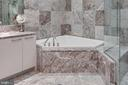 Master whirlpool hydrotherapy tub - 1881 N NASH ST #2309, ARLINGTON