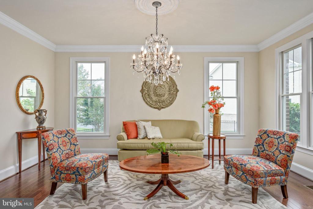 Elegant Living Room - 10323 LYNCH LN, OAKTON