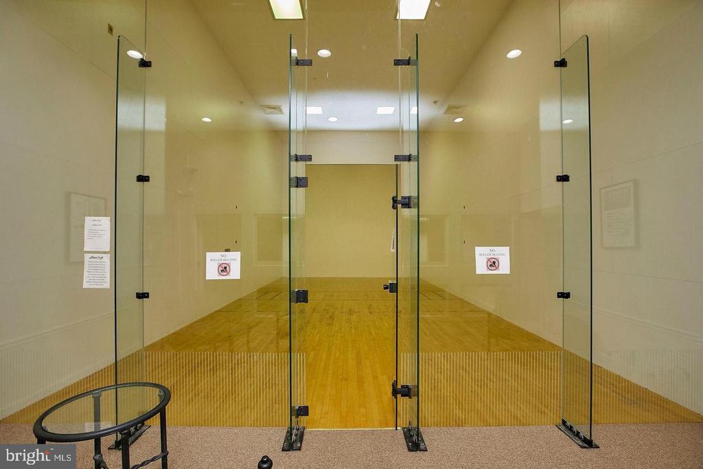 Indoor racquetball court - 4405 FAIR STONE DR #102, FAIRFAX