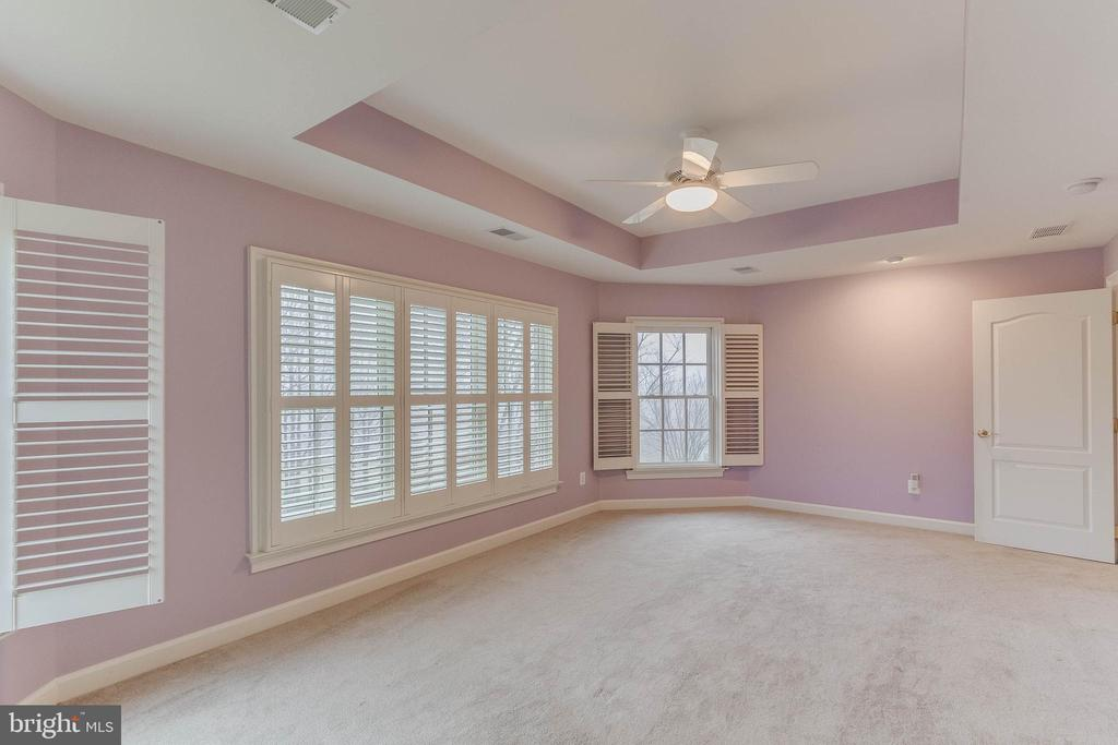 secondary bedroom with beautiful vista views - 17066 WINNING COLORS PL, LEESBURG