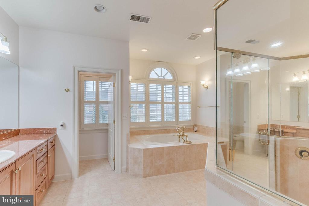 luxury soaking tub in master - 17066 WINNING COLORS PL, LEESBURG